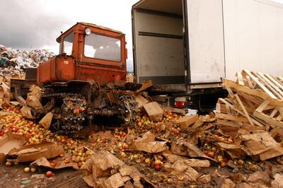 Смоленские таможенники уничтожили более 81 тонны санкционных яблок