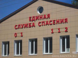 В Смоленской области из-за неисправных электроузлов сгорел Renault Logan