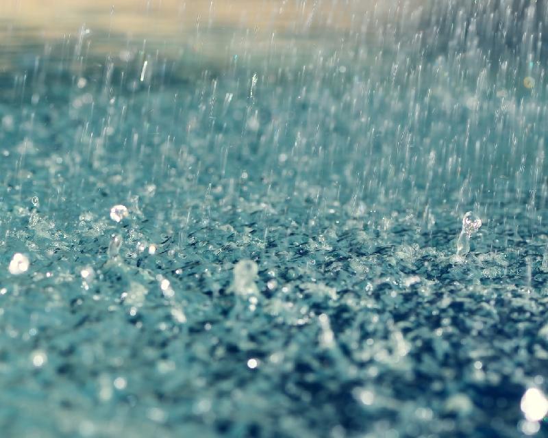 Глава города призвал смолян быть осторожными в непогоду