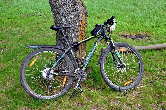 Смоляне похищали велосипеды из проката, оставляя в залог фальшивые документы
