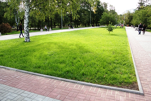 Три парка благоустроят в Смоленской области
