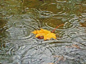 Смолян ожидают затяжные дожди