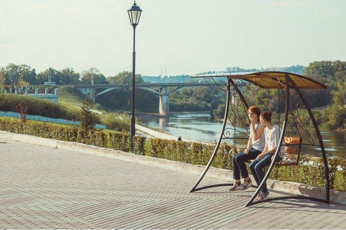 В Смоленске на набережной установят качели