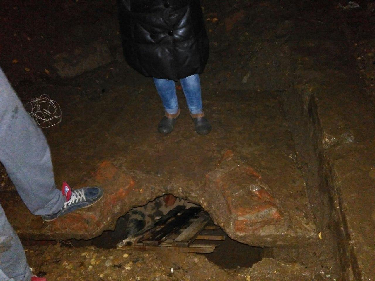 В Смоленске щенки оказались замурованы под плитами теплосети