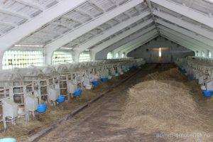 Молодые аграрии Смоленской области могут заручиться поддержкой