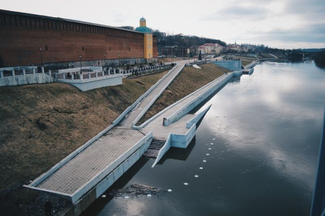 На Владимирской набережной в Смоленске высадят аллею шаровых ив
