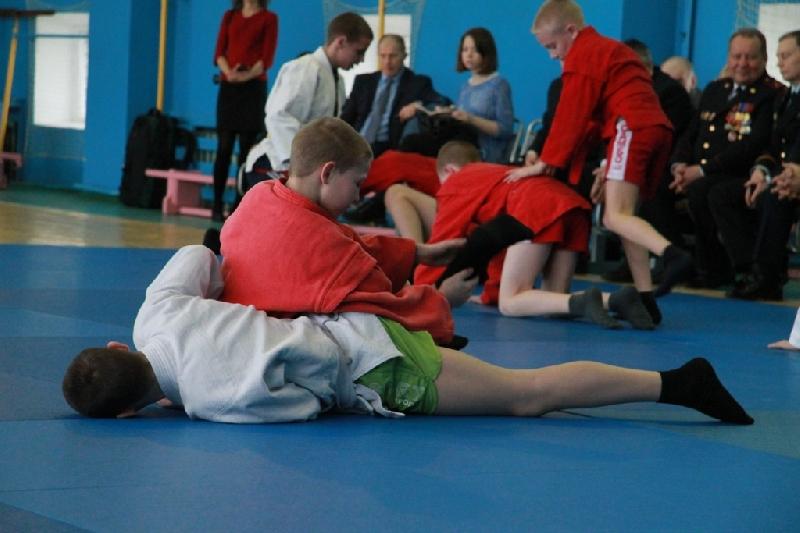 В трех школах Смоленска будут проводить занятия по самбо