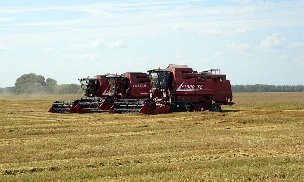 Смоленская область третий год подряд собирает рекордный урожай зерна