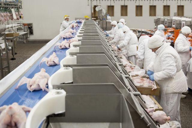 «Мираторг» увеличил производство мяса птицы на 18% — до 86,6 тысяч тонн