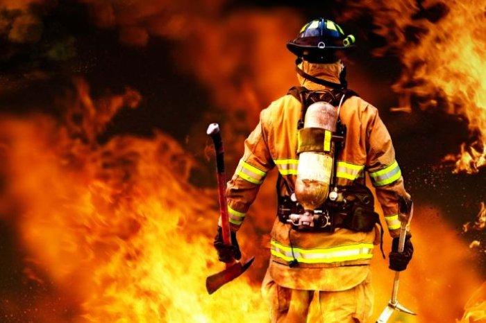 В Смоленской области животные чуть не погибли от огня