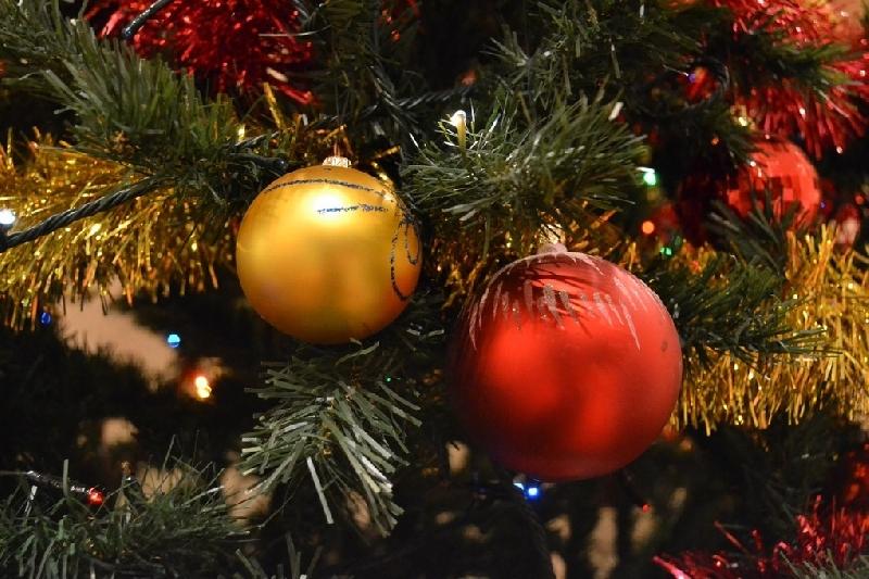 Депутаты Госдумы рассмотрят законопроект о сокращении новогодних каникул