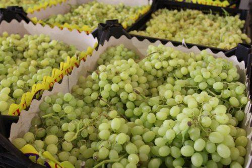 Смоленские таможенники задержали 40 тонн картофеля и винограда