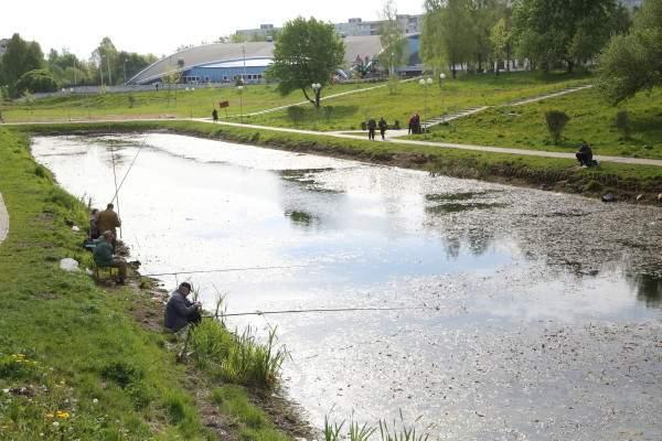 В парке 1100-летия Смоленска установили игровой комплекс