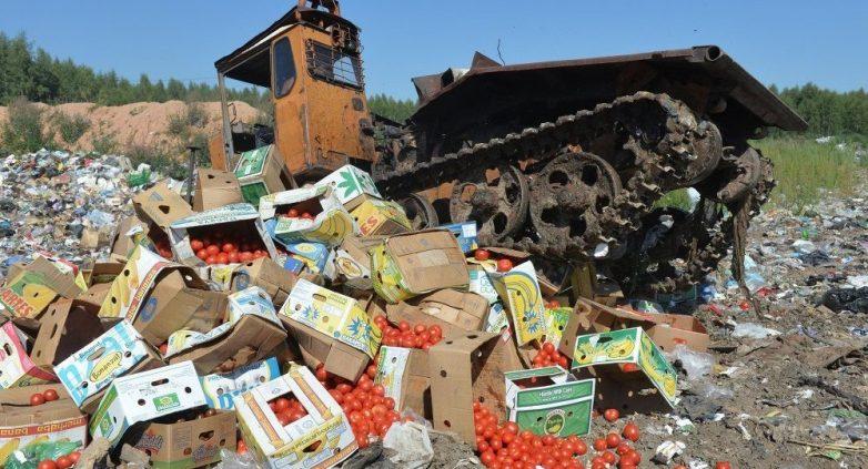 За год смоленские таможенники уничтожили почти 4,5 млн килограмм «санкционки»