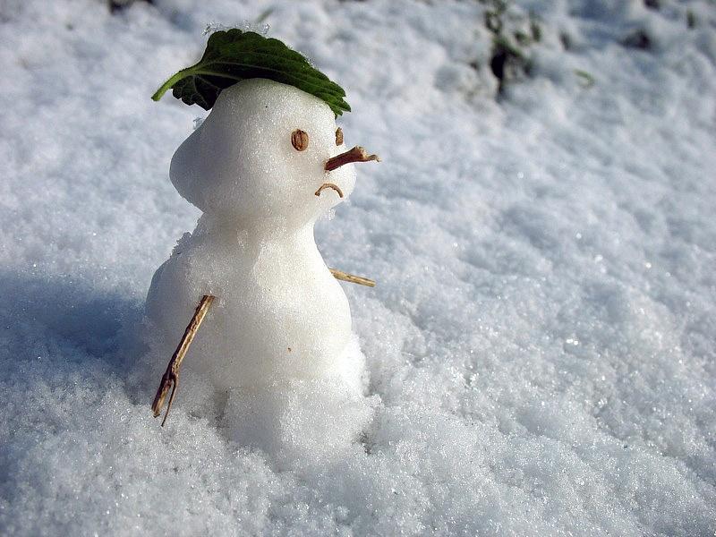 Смолянам обещают апрельскую погоду в новогоднюю ночь