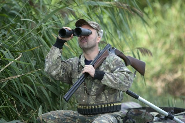 Насколько сократилось число браконьерских охот в Смоленской области
