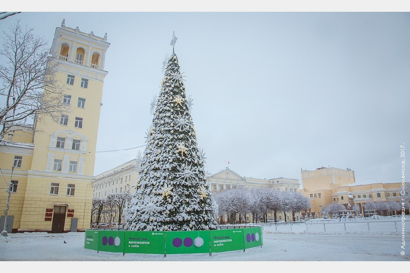 В мэрии Смоленска сообщили, когда разберут главную елку города