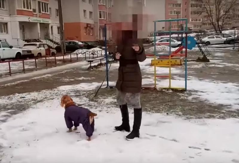 Смолянка не стала убирать за своим питомцем, напакостившим на детской площадке