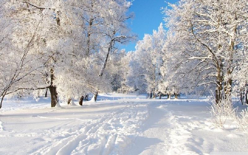 Какая погода ждет смолян 1 марта