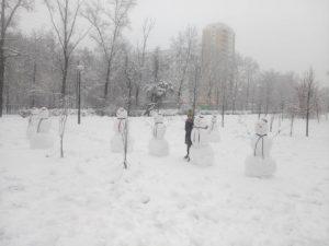 В Смоленской области нашли семерых близнецов