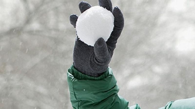 Снегометатель устроил драку в ресторане. Подробности задержания полуголого парня в Смоленске