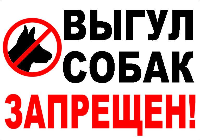 В Смоленске возле мемориалов запретят выгуливать собак и распивать спиртное