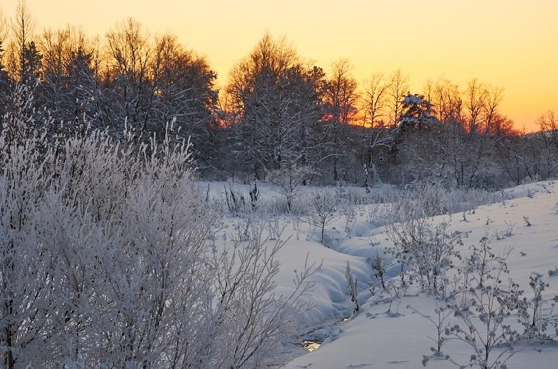 Какая погода ждет смолян 8 февраля