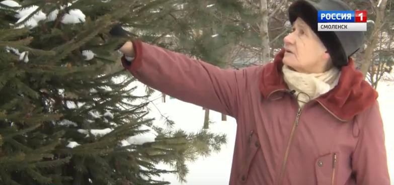 Парк своими руками. Смоленская пенсионерка высадила 135 деревьев