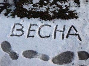 В Смоленской области объявлен «желтый» уровень опасности из-за ветра и мороза