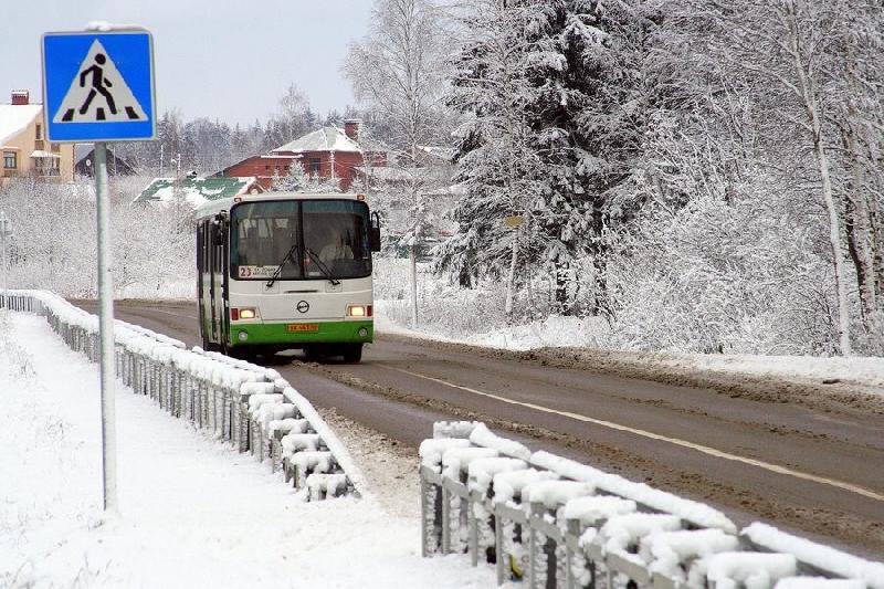 В Смоленске в день выборов будут организованы дополнительные автобусные маршруты