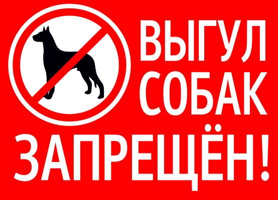 Смолянин просит главу города установить у дома таблички, запрещающие выгул собак