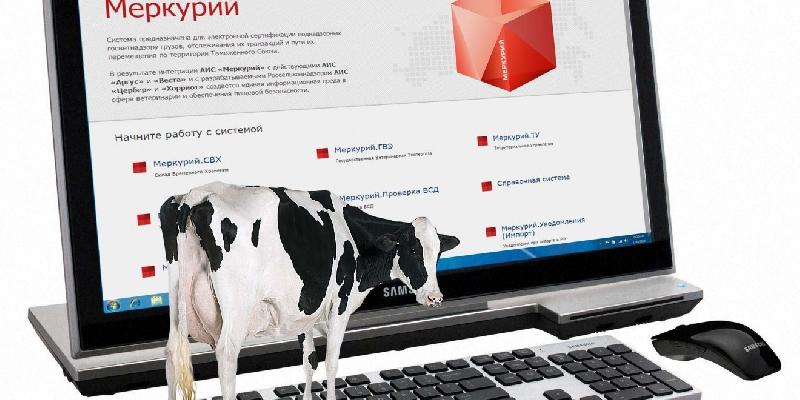 В Смоленской области готовятся к внедрению информационной системы «Меркурий»