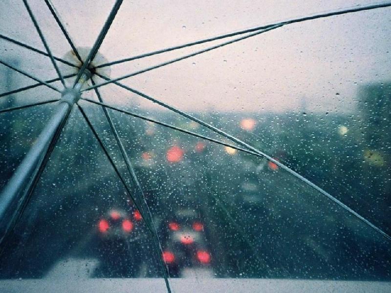 В Смоленской области 25 мая обещают кратковременные дожди