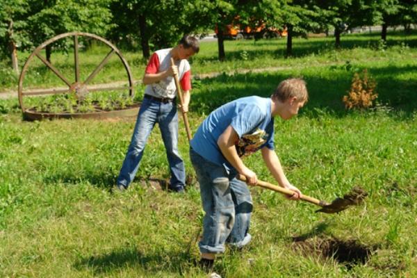 Сколько подростков трудоустроят летом в Смоленской области