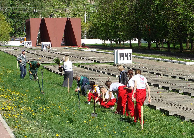В Смоленске на Мемориальном комплексе высадили кедровую аллею