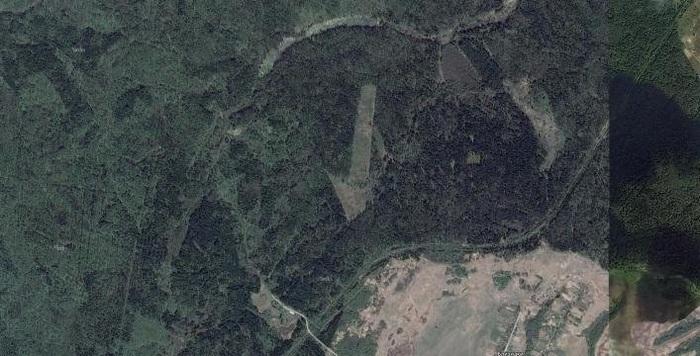 Под Смоленском нашли гигантскую «стрелку», вырубленную в лесу