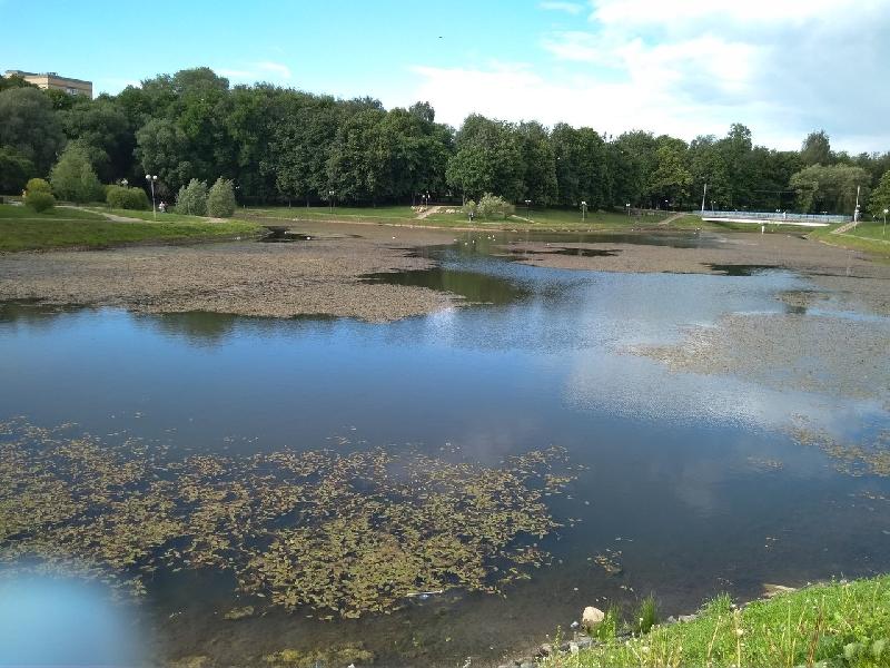 Пруд в парке 1100-летия Смоленска приведут в порядок за 1,2 млн рублей