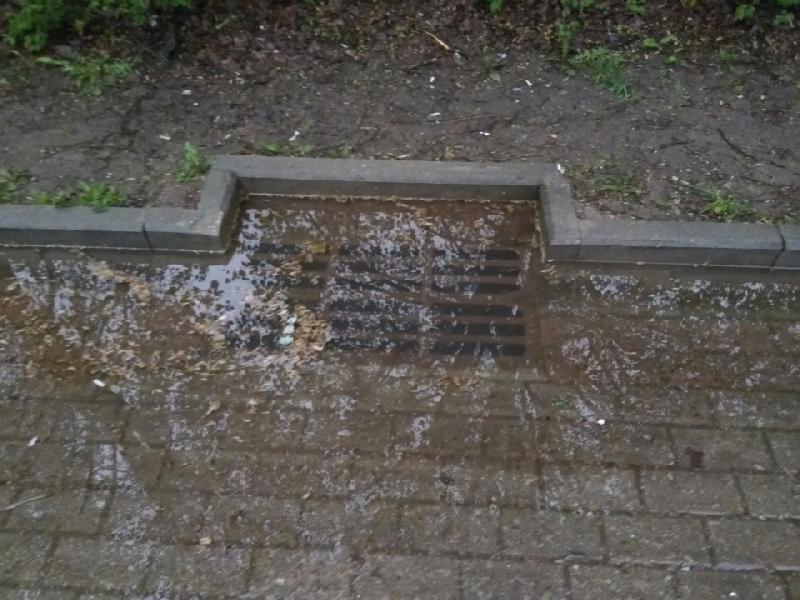В Смоленске назвали проблемные ливневки