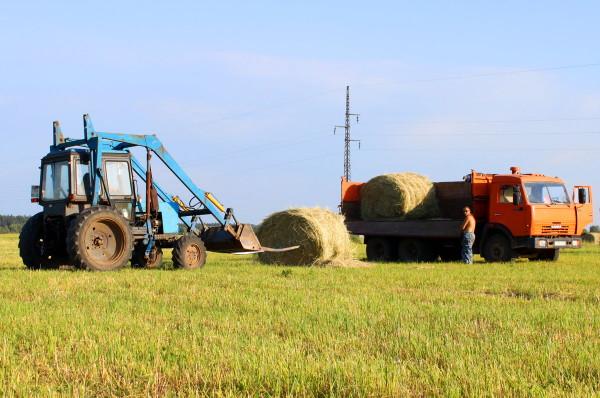Сенокос в Смоленской области набирает высоту