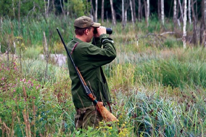 Губернатор установил смоленским охотникам годовой лимит