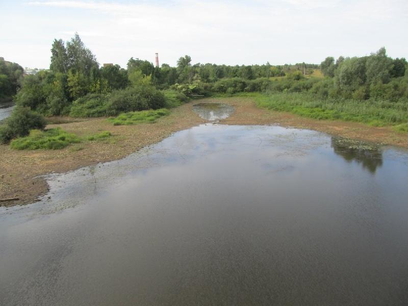 «Это уже похоже на экологическую катастрофу». В Смоленской области река продолжает мелеть