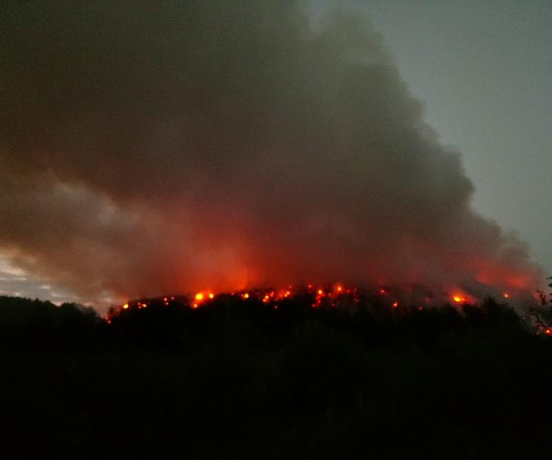 Роспотребнадзор проверил чистоту воздуха в районе горящего мусорного полигона в Смоленской области
