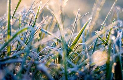 В Смоленской области вновь похолодает