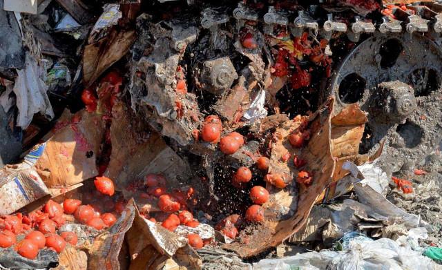 Смолянам пришлись не по душе томаты и огурцы из Беларуси: их закопали