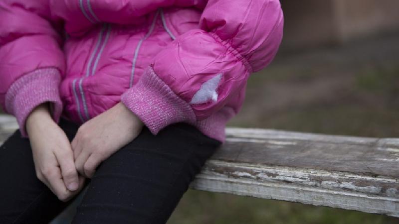 В Смоленской области задержали 63-летнего извращенца, пристававшего к 7-летней девочке