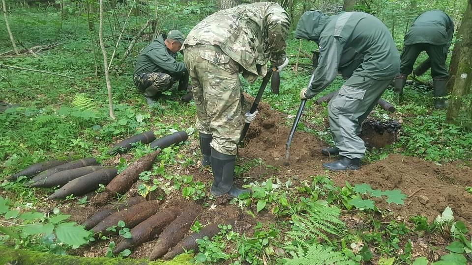 В Смоленской области уничтожили боеприпасы времен Великой Отечественной войны