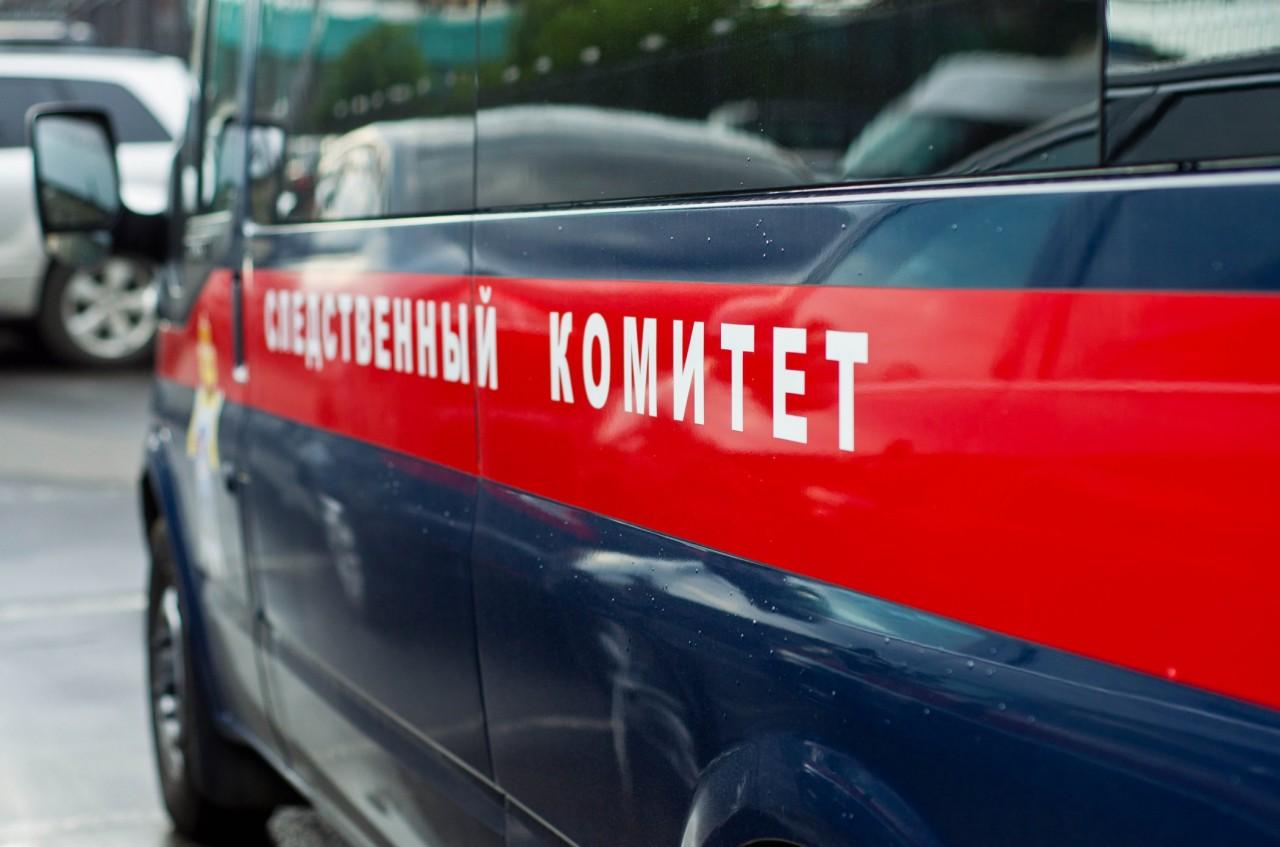 Следователи выясняют обстоятельства гибели двух человек при пожаре под Смоленском
