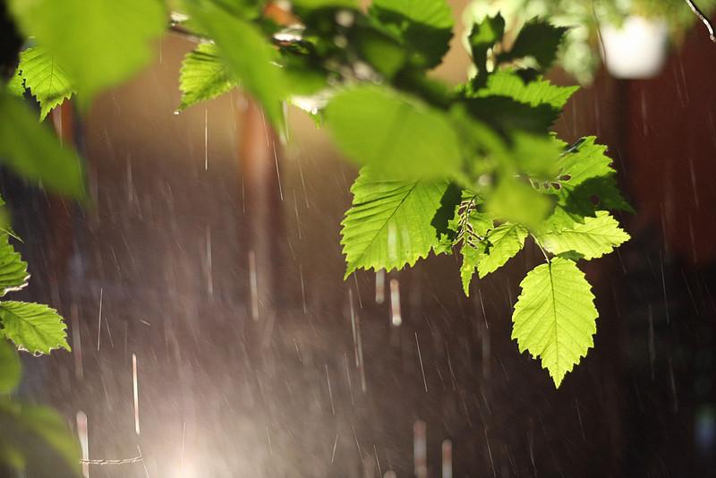 Во вторник смолян ждёт пасмурная погода