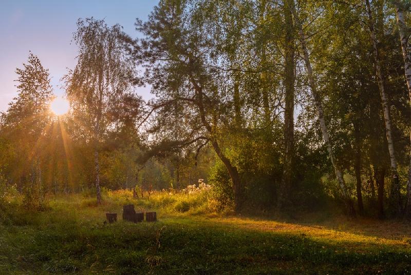 Как изменится погода в Смоленской области 22 августа