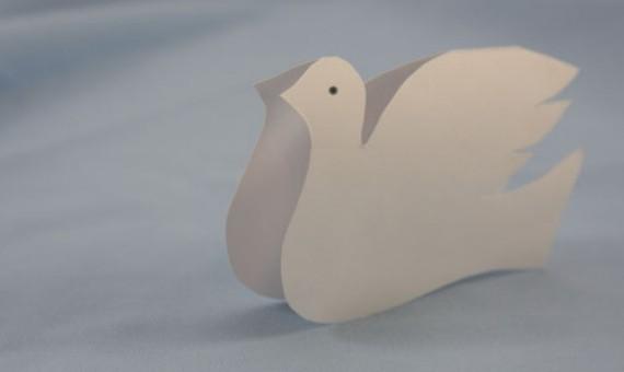 Смолянам подарили белых голубей
